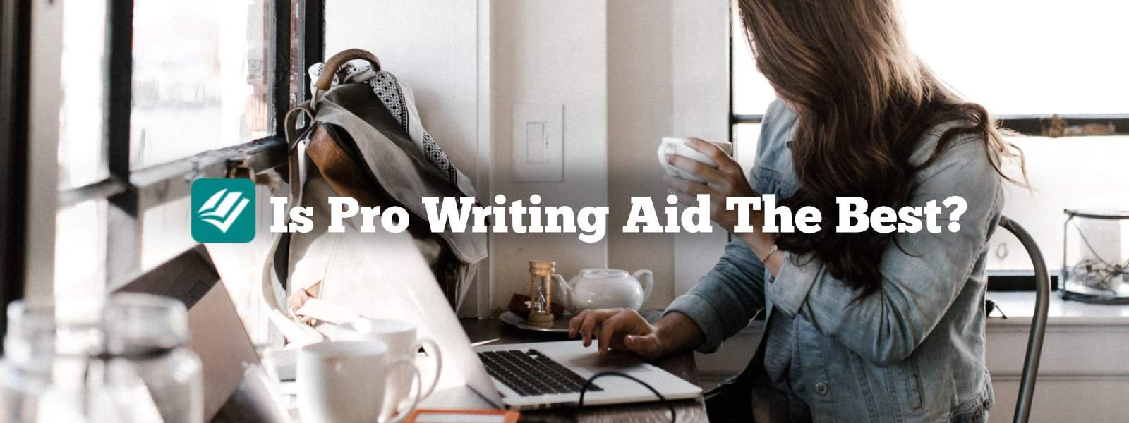 Is-pro-writing-aid-the-best