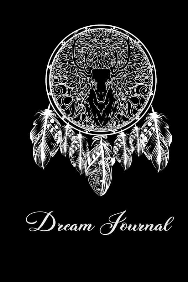 Dream-journals-2